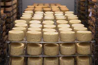 formaggio grasso